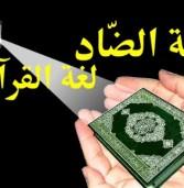 اللغة العربية في حياة المرأة الداعية (حوار)