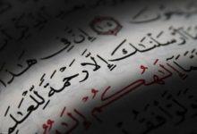 معالجة الأخطاء في ضوء الهدي النبوي