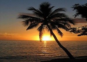 Sunset with coconut palm tree Fiji 300x214 Maryam Gave Herself to Da`wah (Part One)