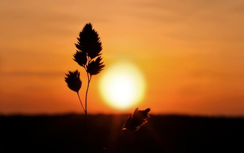 sunrise natural scene