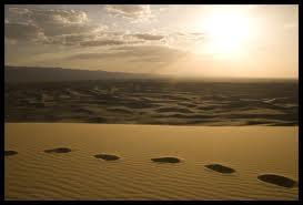 steps in desert