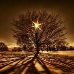 Inspiring history-nature