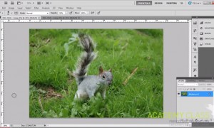 How to Tweak Photos like a Pro in Photoshop