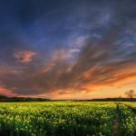 sky_nature