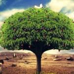 deep rooted tree