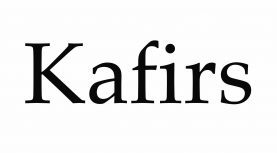 Why Do Muslims Abuse Non-Muslims by Calling Them Kafir?