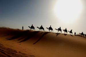 camel caravans