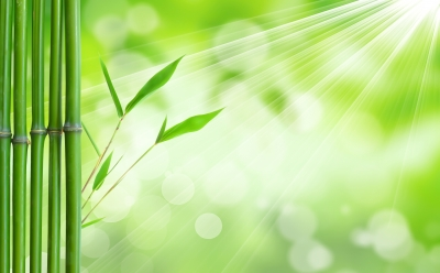 green nature-rays